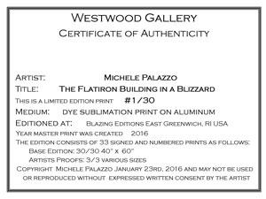 Michele-Certificate-4060-(1)sm